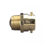 Dixon Valve CSSTM30F30T-C, Spring Check Snoot Male Outlet