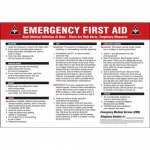 "Accuform MFSD604XT10, 14″ x 20″ Safety Sign ""Emergency First Aid"""